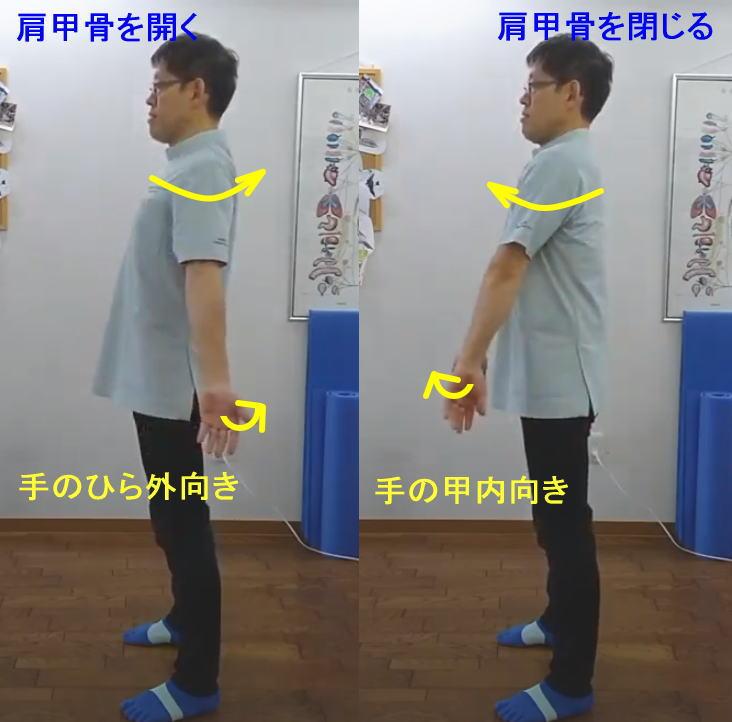 巻き肩矯正エクササイズ2